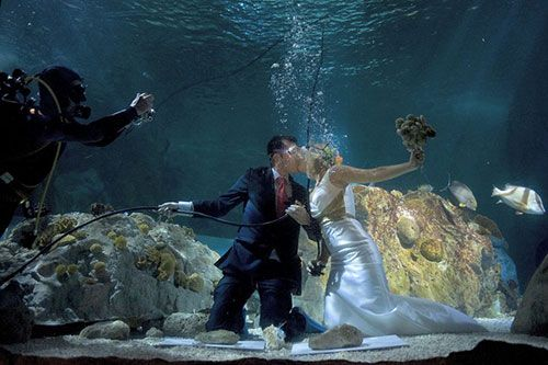 Aquatic Alternatives for the Couple That's Doesn't Want a Typical Beach Wedding
