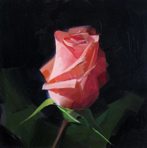 Pink Rose Study 1, painting by artist Qiang Huang