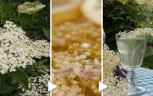 Hyldeblomst, rørsukker, citronskal og citron: 40-50 afstilkede nyudsprungne blomster, 1 kg. rørsukker, 3-4 citroner. Citronskal rives med citronrivejern. 2 l. vand koges med sukker til det er opløst. Tilsæt citroner i skiver, der mases lidt. Tilsæt citronskallerne og blomster og rør godt. Sæt på køl, trække i tre-fire dage. Der skal røres i det et par gange dagligt. Den færdige ekstrakt blandes med 3-4 dele vand. Denne variant er mere frisk, og egner sig godt som aperitif med lidt…