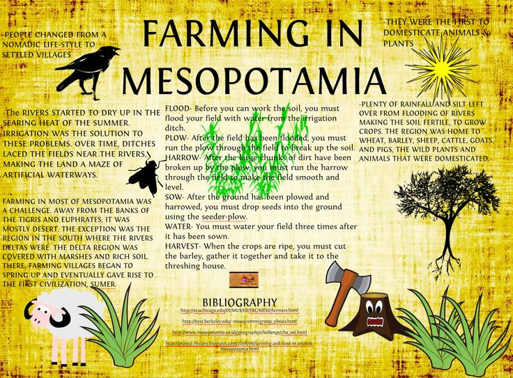 Use math to learn about the problems faced by farmers in ancient Mesopotamia! Grade 6 PBL project   Ratios And Proportional Relationships
