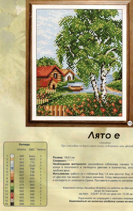 Gallery.ru / Фото #31 - березы - irisha-ira
