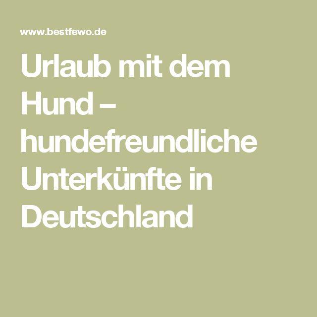 Urlaub mit dem Hund – hundefreundliche Unterkünfte in Deutschland