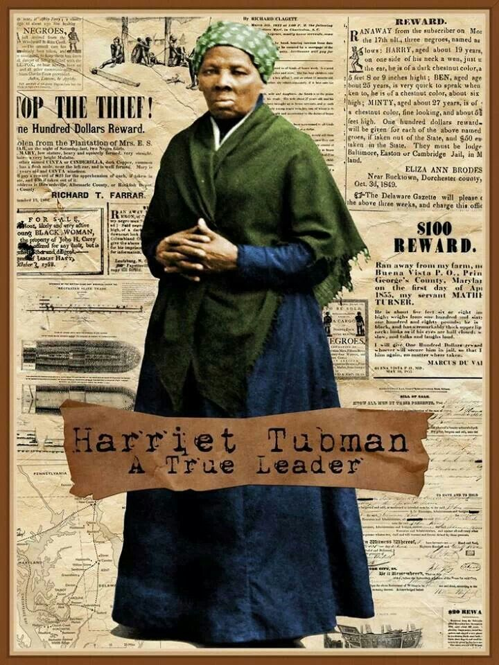 harriet tubman fight for freedom Harriet tubman and the fight for freedom : a brief history with documents responsibility harriet tubman in history and memory a chronology of tubman's life.