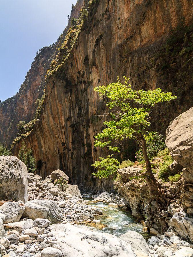 Kreta - Landschaft, Schlucht - DFORUM