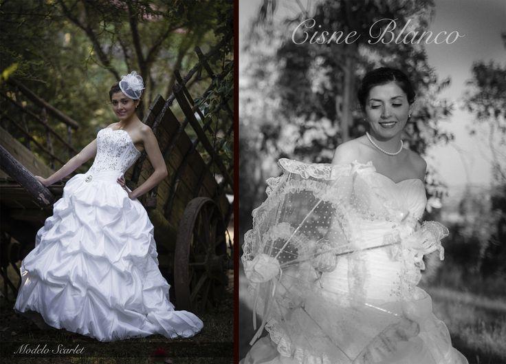 """Sesión y Catálogo para vestidos """"Cisne Blanco"""", Noviembre 2014"""