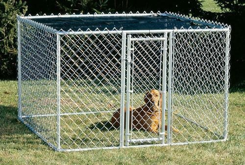 Dog Kennels For Sale In Miami Fl