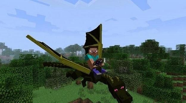 So It's true-u CAN tame the ender dragon with bones!!!!!!!!!!!!!!