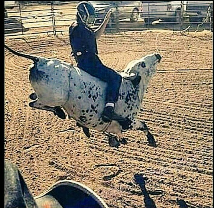Here's a Buckin' cool Photo Bull Riding Rodeo Strong all Day Long! By Rider Mariano Castro TEAM Cowboy Coffee Chew Keep them pictures coming.  We are LOVIN' IT!