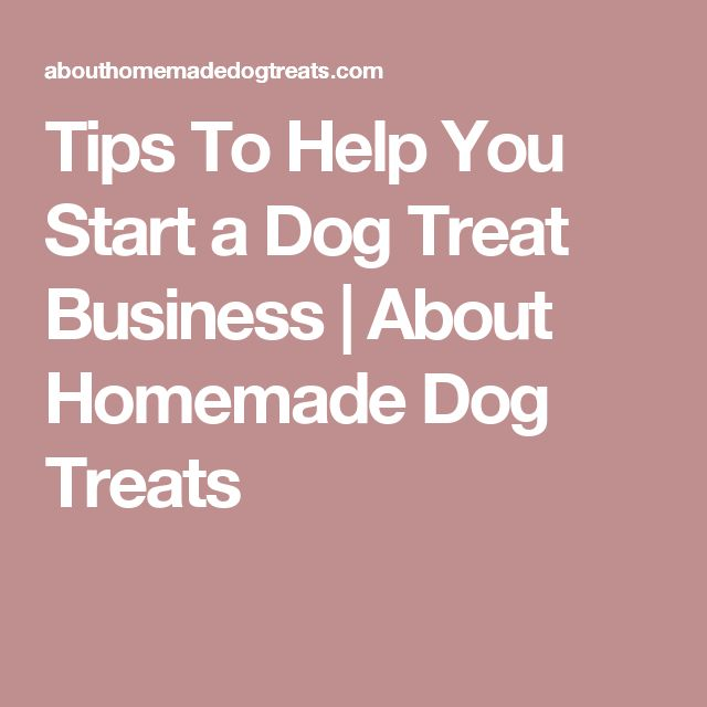 Tips To Help You Start a Dog Treat Business | About Homemade Dog Treats