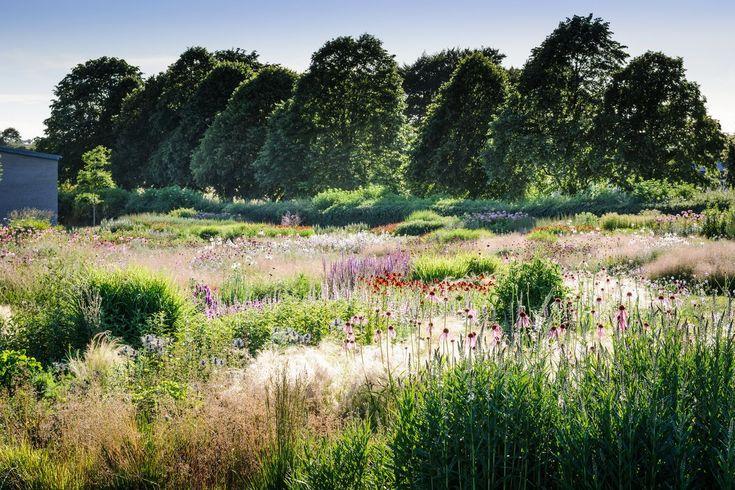 Piet Oudolf Field Hauser & Wirth, Durslade Farm, Bruton