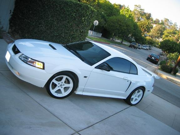 Gt White Mustang pearl 2000 Ford Mustang