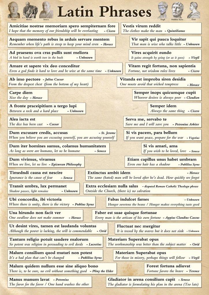 Famous Latin Phrases Poster Latin phrases, Latin phrase