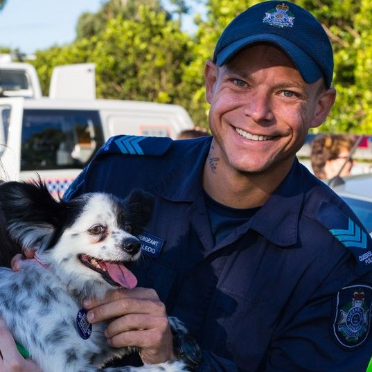 Sunday's 'Dogs on Patrol' event in North Brisbane saw the recruitment of well over 500 dogs to our new pooches program.