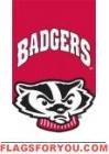 Applique -  University of Wisconsin House Flag