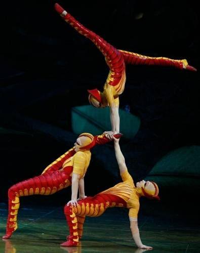 Cirque du Soleil. | OVO Cirque du Soleil Pictures: Pictures of OVO, a Cirque du Soleil ...