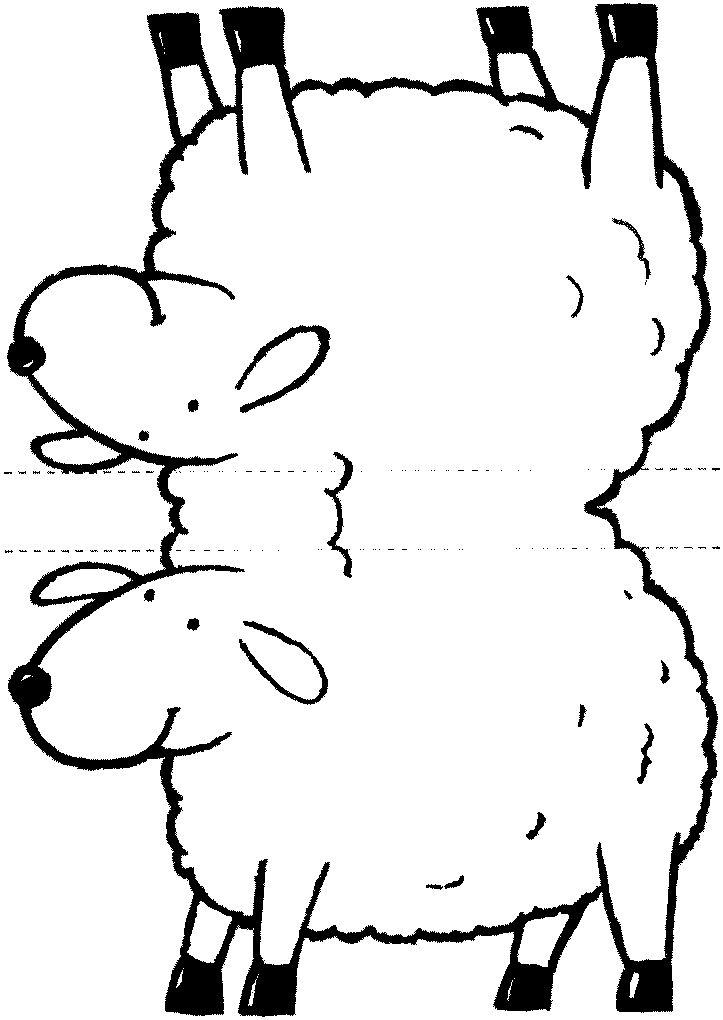 Parábola da ovelha