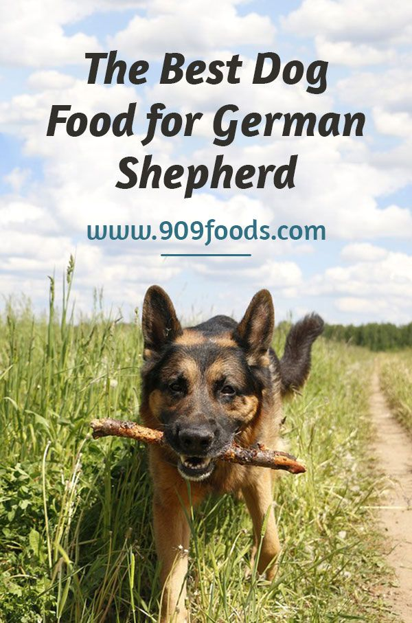The Best Dog Food For German Shepherd Also Known As Gsd The