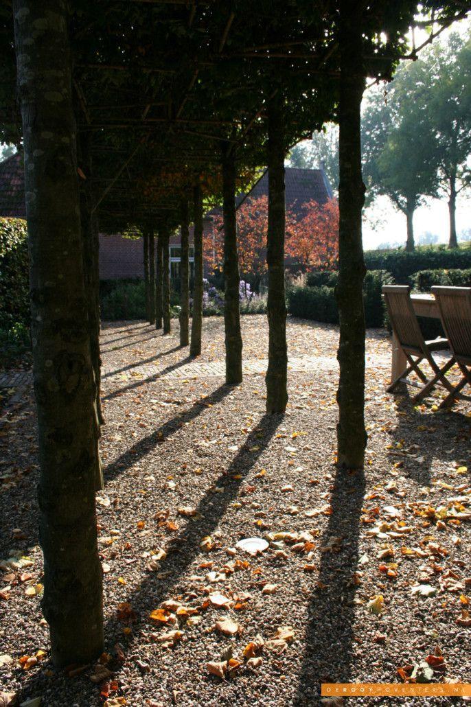 Tuin inspiratie De Rooy Hoveniers stadstuin tuin van het jaar 2014 bomenlaan Woudrichem