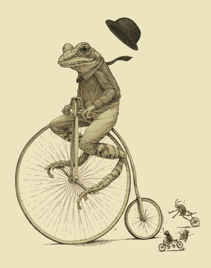 Frog on Bike Print 11x14 Old Time Bicycle by ScatterbrainPrints, $24.00