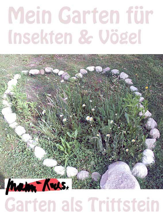 Garten Fur Insekten Und Vogel Als Trittstein Mami Rocks Garten Nutzgarten Anlegen Pflanzen