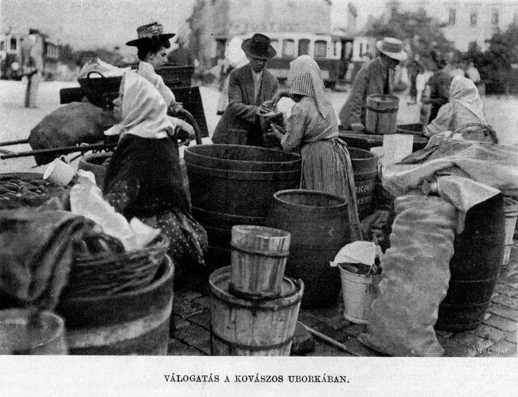 Válogatás a kovászos uborkában. Vasárnapi Ujság, 1905