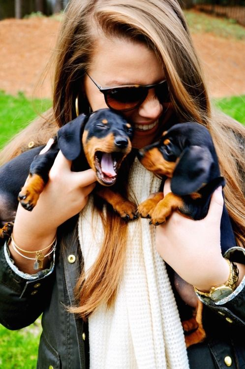 these puppies!