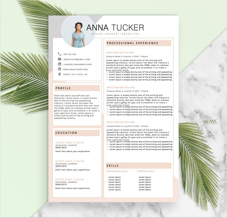 Best Resume Templates Images On   Modern Resume