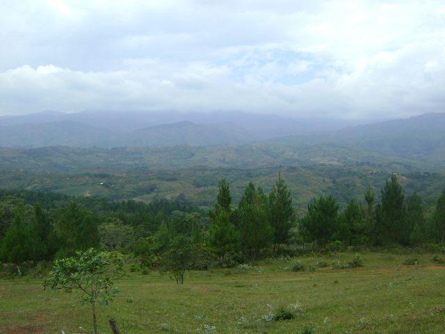 Japio, Cauca