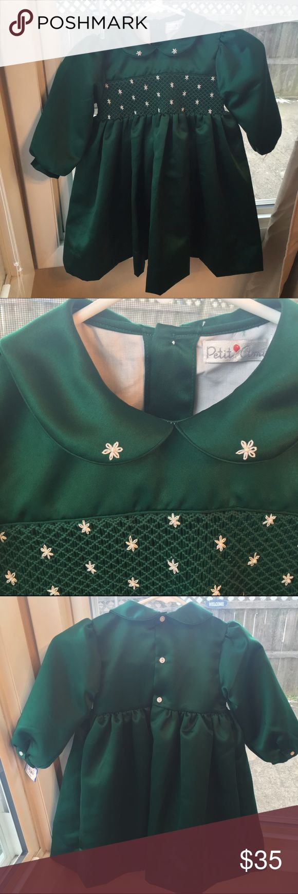 Petite Ami Green Holiday Dress Brand new, fully lined, beautiful toddler holiday dress! Features gorgeous snowflake embroidery and back buttons. Ships same day if ordered by 10:00 CST. Bundle 3 items and save 15% Petite Ami Dresses Formal