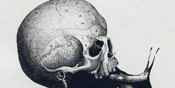 Crânio ou caracol? O teste visual que revela algo mais sobre a nossa personalidade