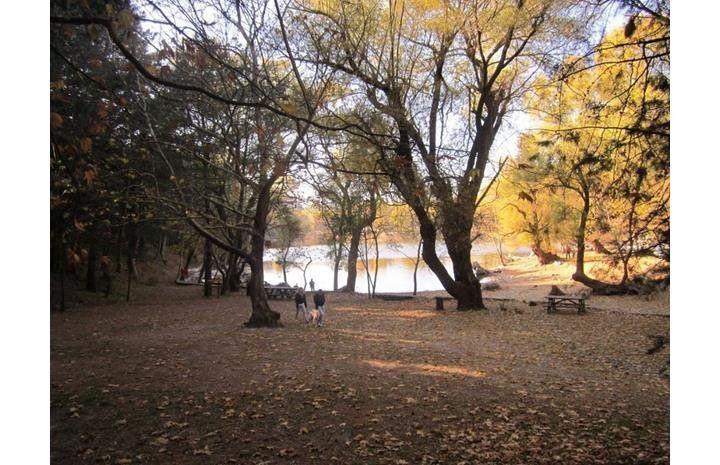Karagöl Tabiat Parkı | Bungalov, Karavan, Motosiklet, Çadır Kamp Alanları | İzmir, Karşıyaka, Yamanlar