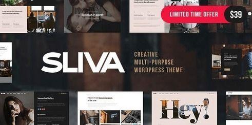 Sliva - Responsive Multi-Purpose Theme | wordpress | Best