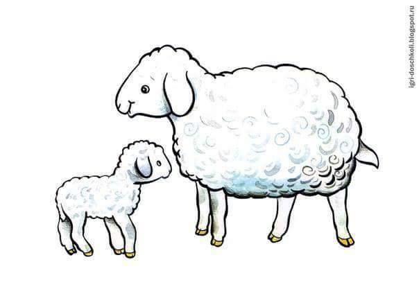 (2016-12) Får og lam