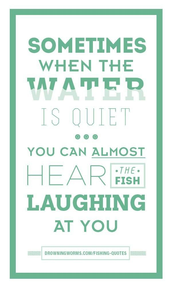 65 best funny fishing quotes images on pinterest fishing for Funny fish sayings