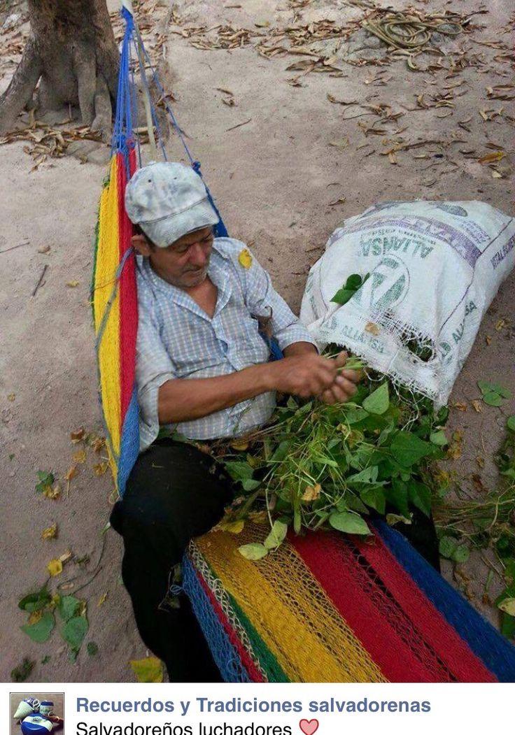 El Salvador 27 best San Salvador El
