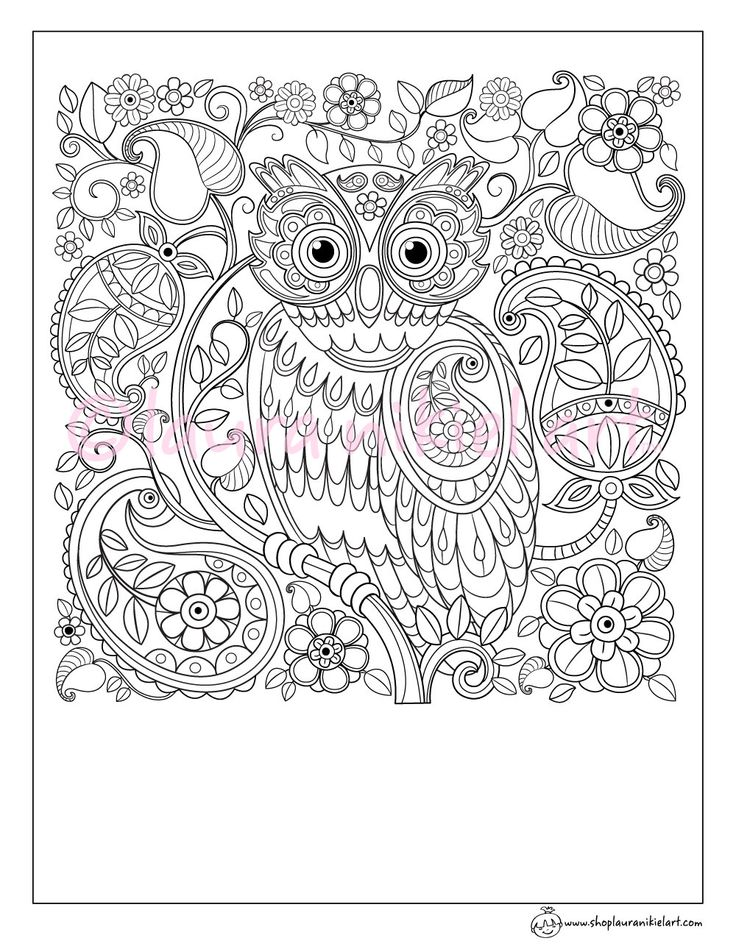Cute Owl Paisley Pattern Adult Coloring Page - Coloring Sheet - Line Art - PDF - Instant Download by lauranikielart on Etsy