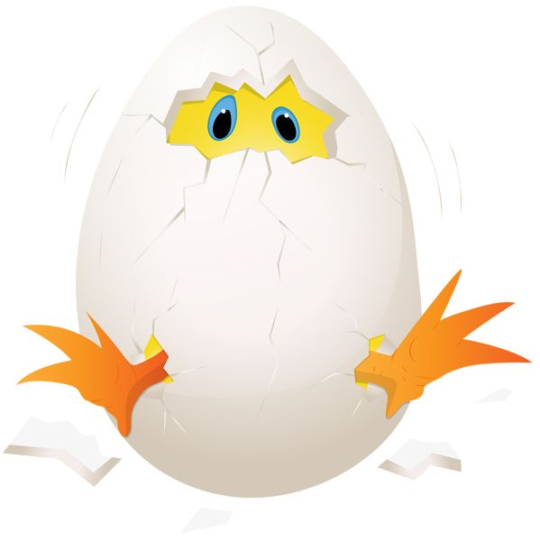 clipart chicken and egg - photo #17