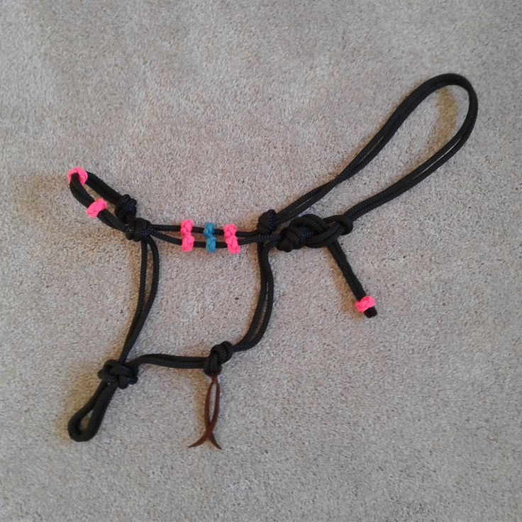 Custom Rope Halters & Horse Training Equipment by Natural Equine Connection.