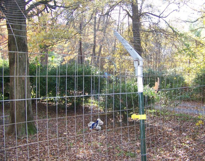 1000 Images About Fencing For My 7 German Shepherds On