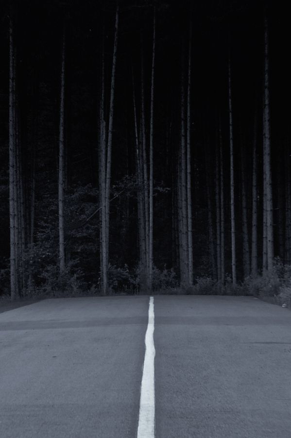 .: Photos, In My Dreams, Terry O'Neil, The Roads, Forests Deep, Dark Side, Terry Kanokin, Roads Meeting, Photography