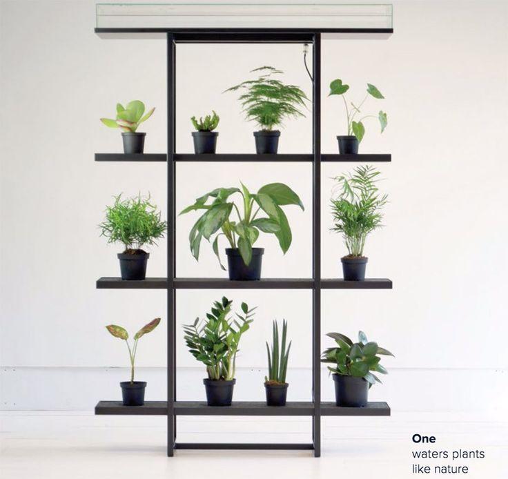 Den vertikale indedørs have