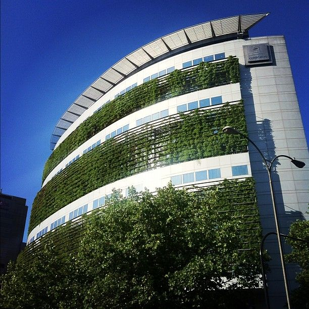 Green office building Designed by Enrique Browne...Love the idea of looking out an office window and seeing green! :)