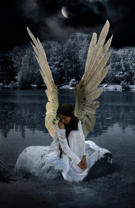 164 best images about angels on pinterest warrior angel dark angels and gothic art - Gothic fallen angel pictures ...