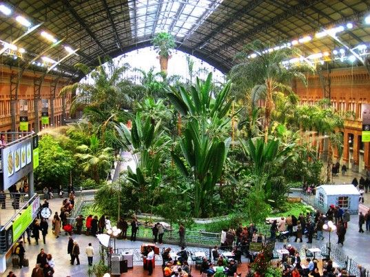 Madrid's Atocha Station Doubles as an Indoor Botanical Garden and Turtle Sanctuary | Inhabitat - Sustainable Design Innovation, Eco Architecture, Green Building