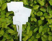 Plant Labels 001/002/003/004