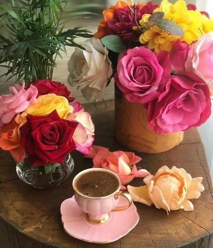 могут открытка с добрым утром с цветами много обаяние