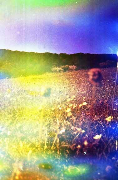 Being Naughty to Your Film to Get Nice Results! · Lomography