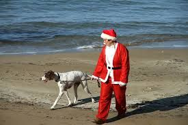 Spot Santa and his dog during your Christmas morning walk along the beach. Mid-December in Cyprus is almost guaranteed to be sunny with temperatures reaching up to 25C at noon!