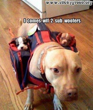 Sub-Woofers... How Funny!