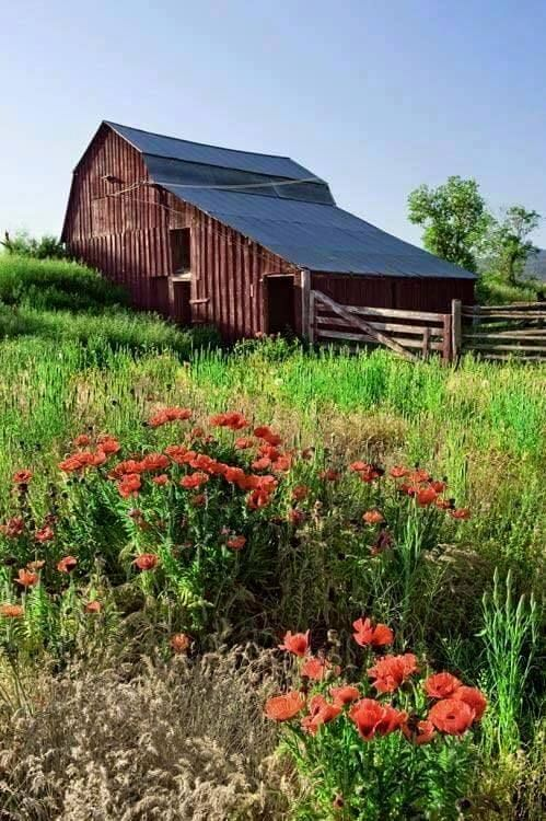 #Barn on a slope...